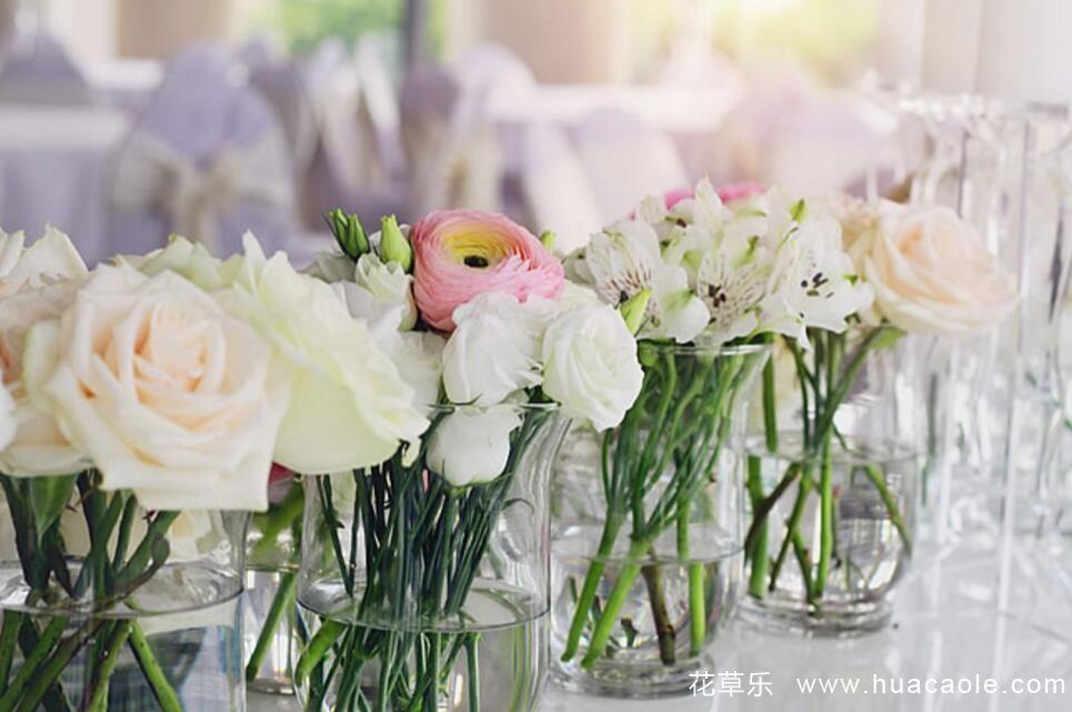 怎样延长玫瑰花花期 延长玫瑰花期的方法