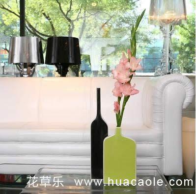 让优雅的花瓶成为居室一道美丽的美景
