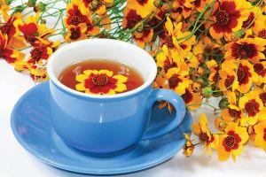菊花茶的功效与作用,饮用禁忌